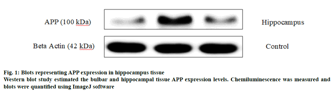 IJPS-expression