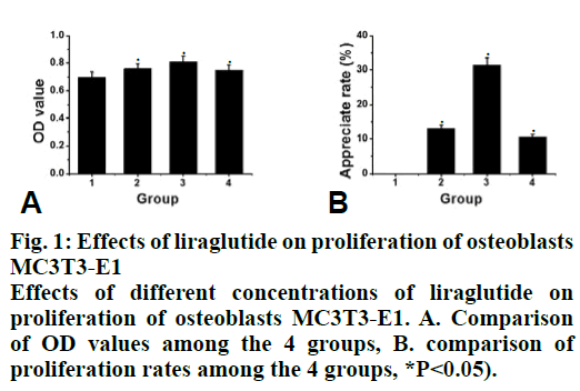 IJPS-liraglutide