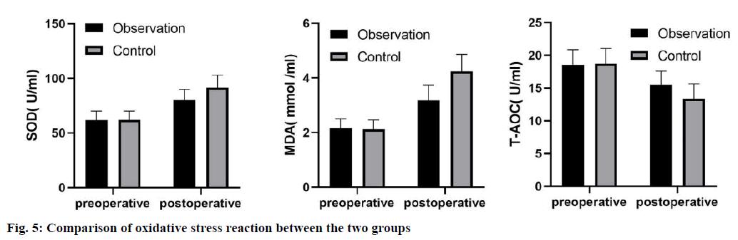 IJPS-oxidative