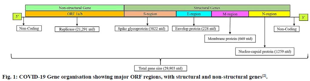 IJPS-regions