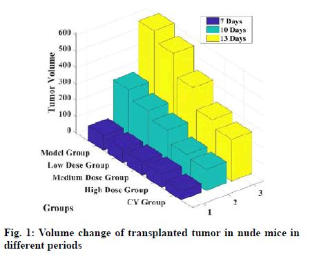 IJPS-transplanted-tumor