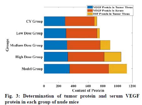 IJPS-tumor-protein