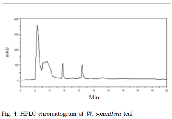 Determination of Withaferin-A in two Withania Species by RP-HPLC