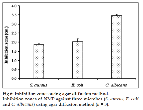 Characterization and antimicrobial activity of N-methyl-2