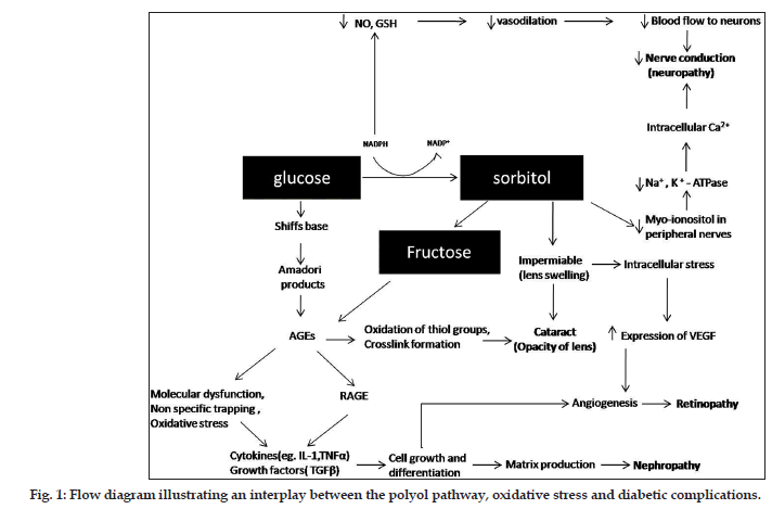 Plants used in the management of diabetic complications