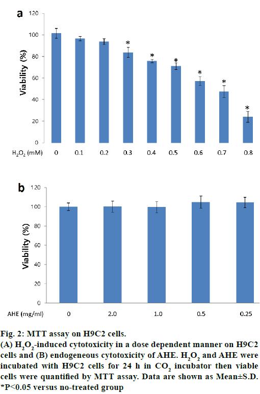 IJPS-MTT-assay-H9C2-cells