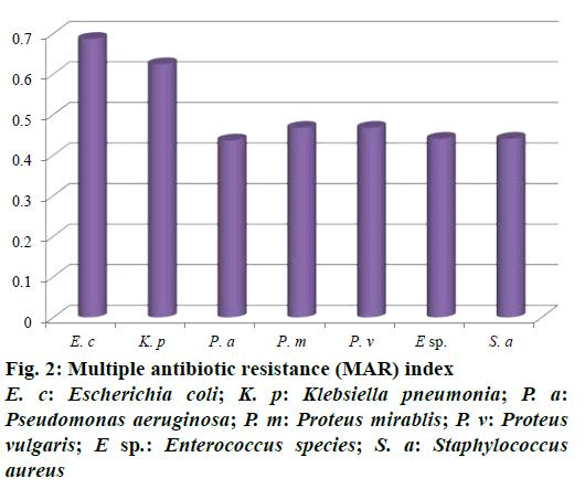 IJPS-Multiple-antibiotic-resistance