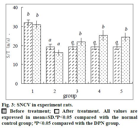 IJPS-SNCV-experiment-rats