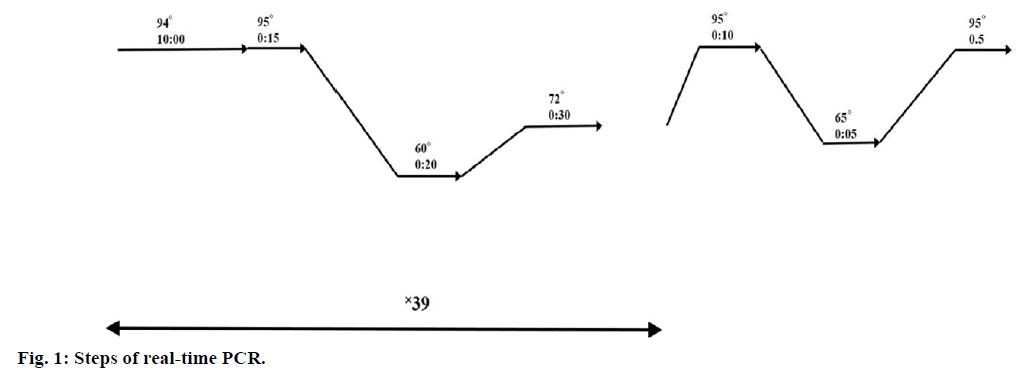 IJPS-Steps-real-time-PCR
