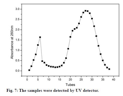 IJPS-UV-detector