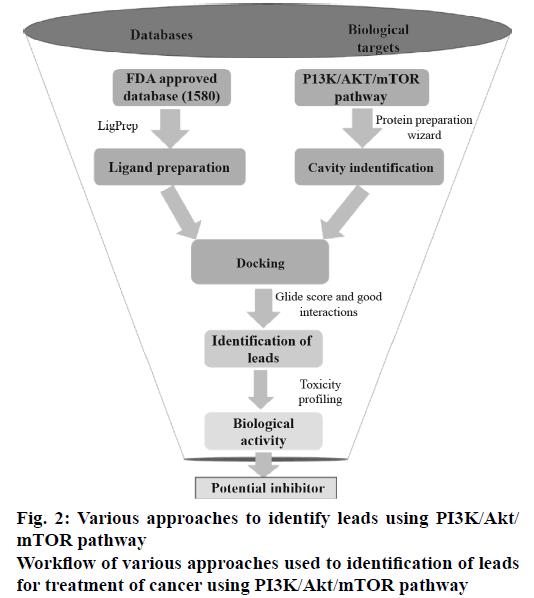 IJPS-Various-approaches