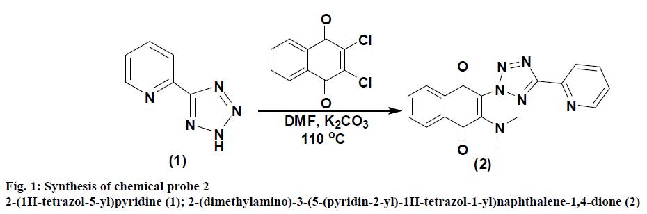 IJPS-chemical-probe
