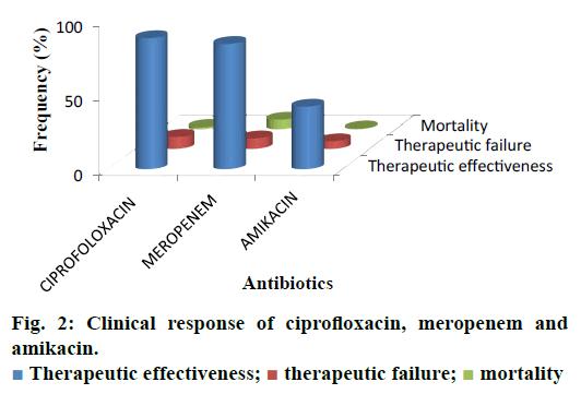 IJPS-ciprofloxacin-meropenem