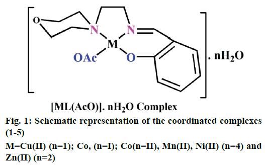 IJPS-coordinated-complexes