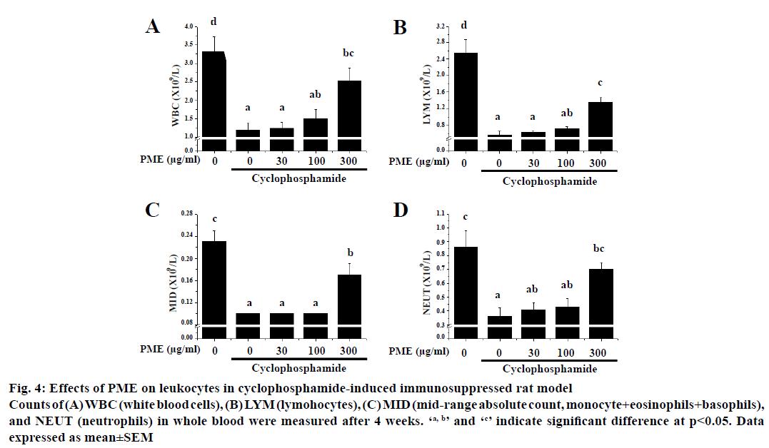 IJPS-cyclophosphamide-induced