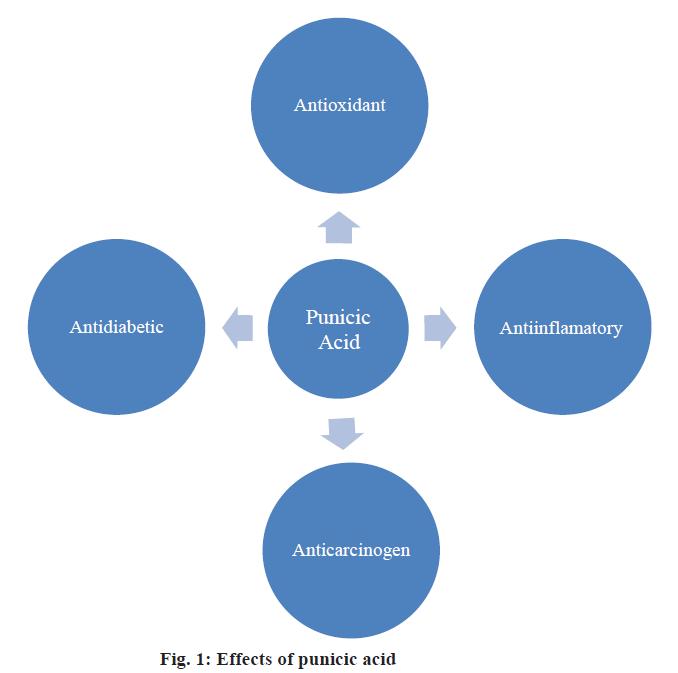 IJPS-effects-punicic-acid