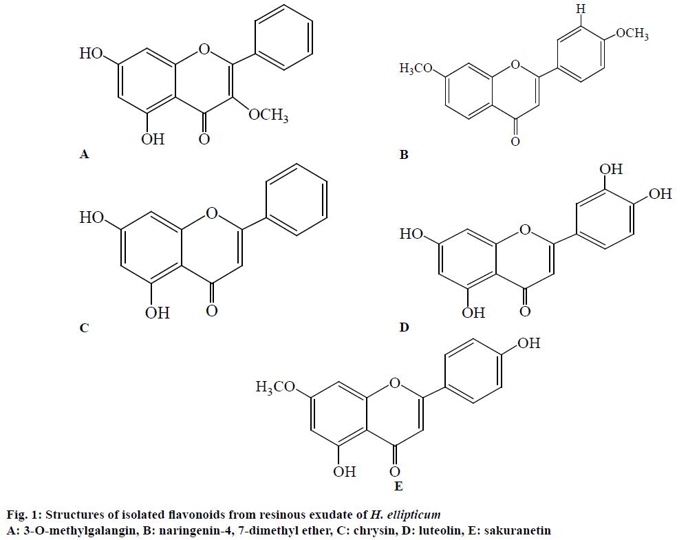 IJPS-isolated-flavonoids