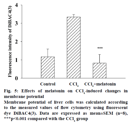 IJPS-membrane-potential