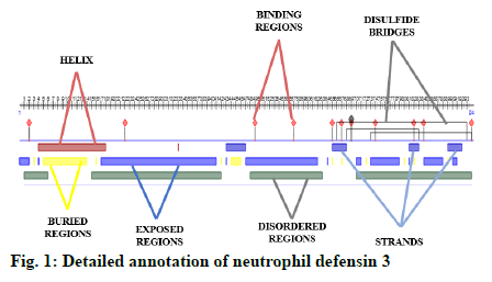 IJPS-neutrophil-defensin