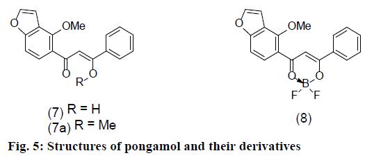IJPS-pongamol-derivatives