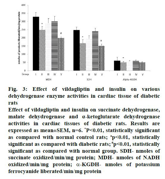 IJPS-vildagliptin-insulin