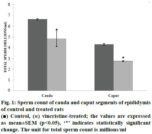 ijpsonline-Sperm-count