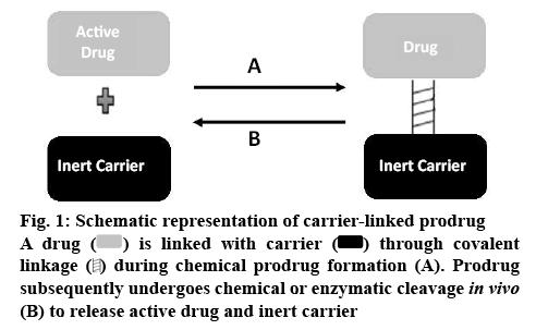 ijpsonline-carrier-linked