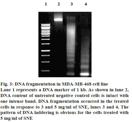 ijpsonline-cells-treated