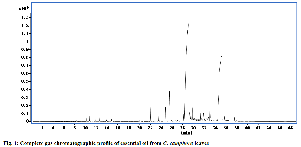 ijpsonline-chromatographic-profile
