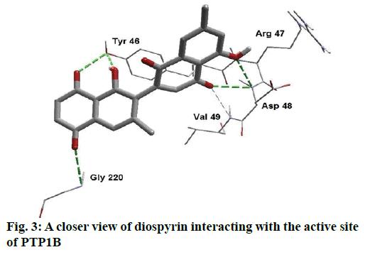 ijpsonline-closer-view