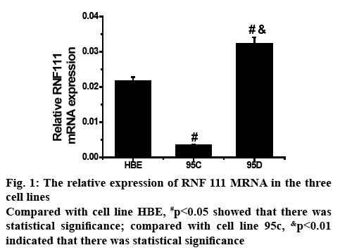 ijpsonline-expression