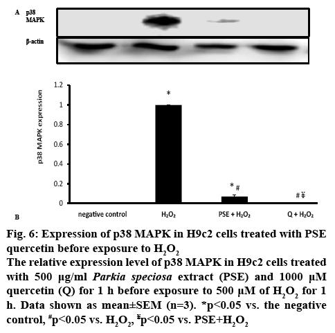 ijpsonline-negative-control