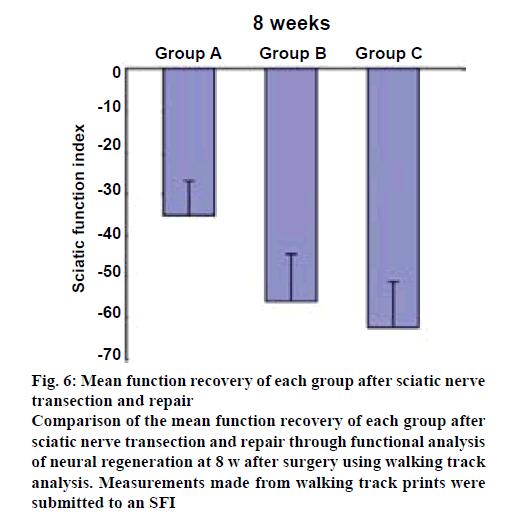 ijpsonline-recovery