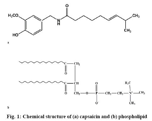 ijpsonline-structure