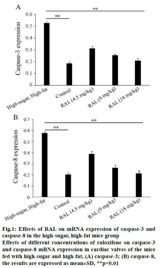 pharmaceutical-sciences-caspase-mice