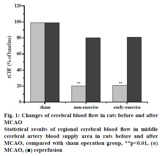 pharmaceutical-sciences-cerebral-blood