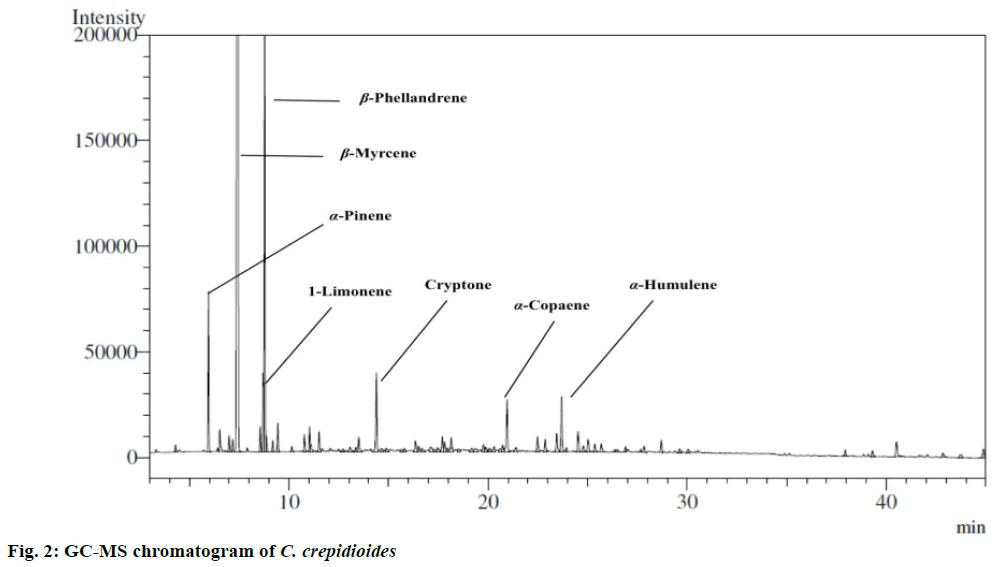 pharmaceutical-sciences-chromatogram