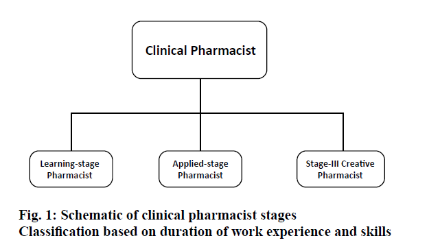 pharmaceutical-sciences-clinical-pharmacist-stages