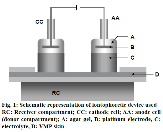 pharmaceutical-sciences-iontophoretic-cathode