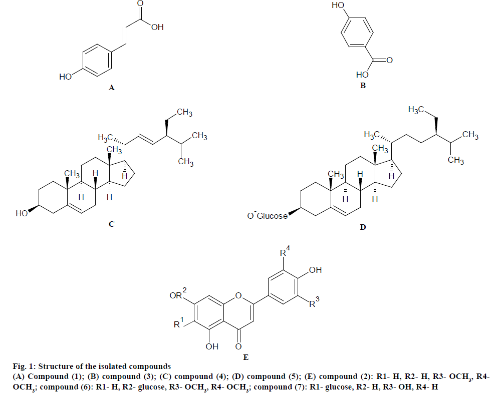 pharmaceutical-sciences-isolated-compounds