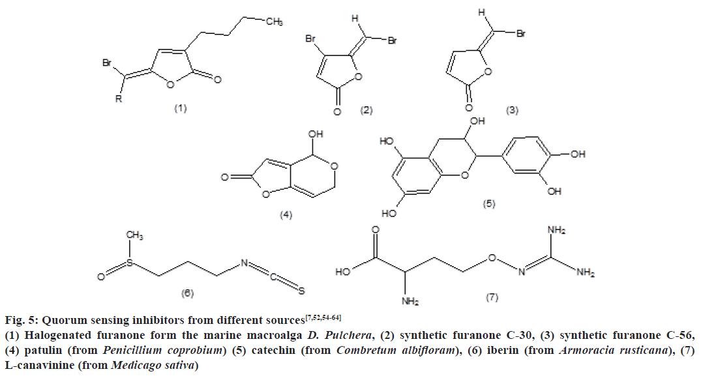 pharmaceutical-sciences-quorum-sensing